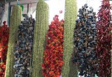 kurutulmus sebze satmak