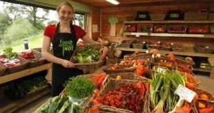 Organik besin satmak